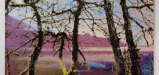 Elizabeth Magill, Headland (1), 2017, oil and screenprint on canvas, 153 x 183.5 cm / 60.2 x 72.2 in